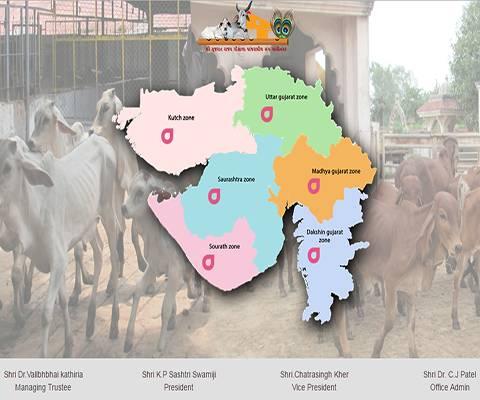 Shree-Gujrat-Rajya-Gaushala-Panjrapol-Sanghp